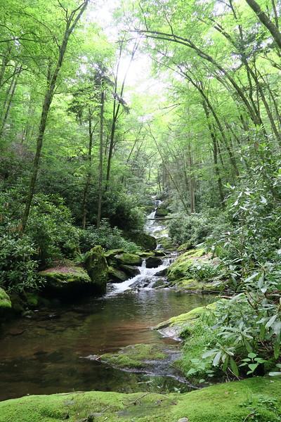 Buckeye Creek -- 4,400'