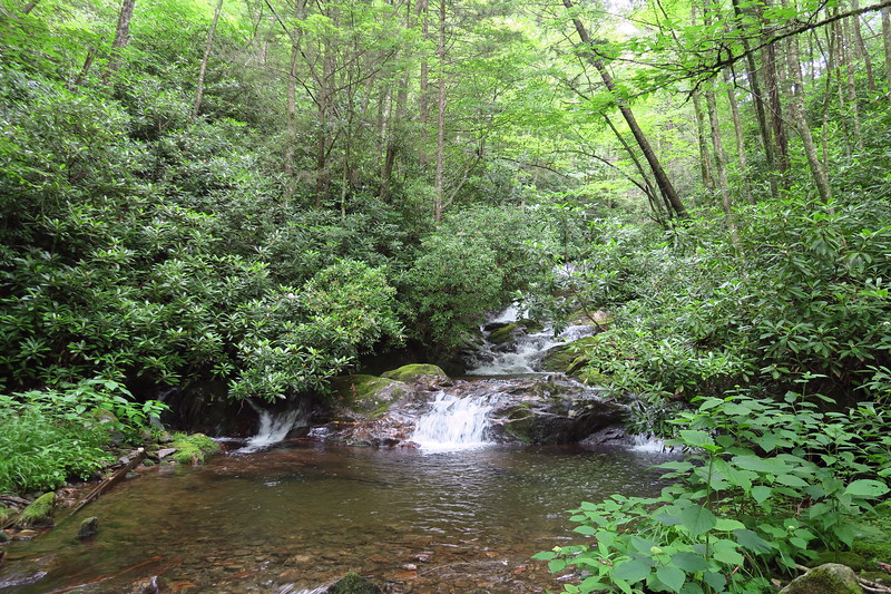 Buckeye Creek -- 4,330'