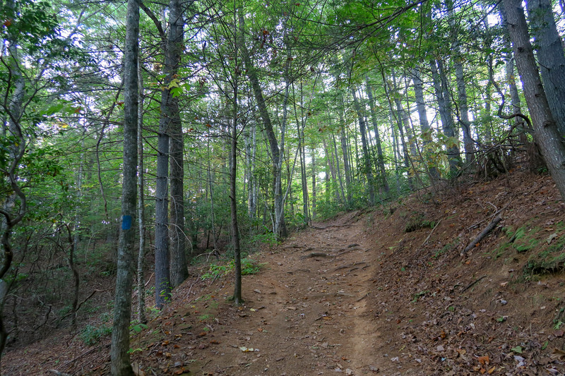 Deerfield Connector Trail -- 2,280'