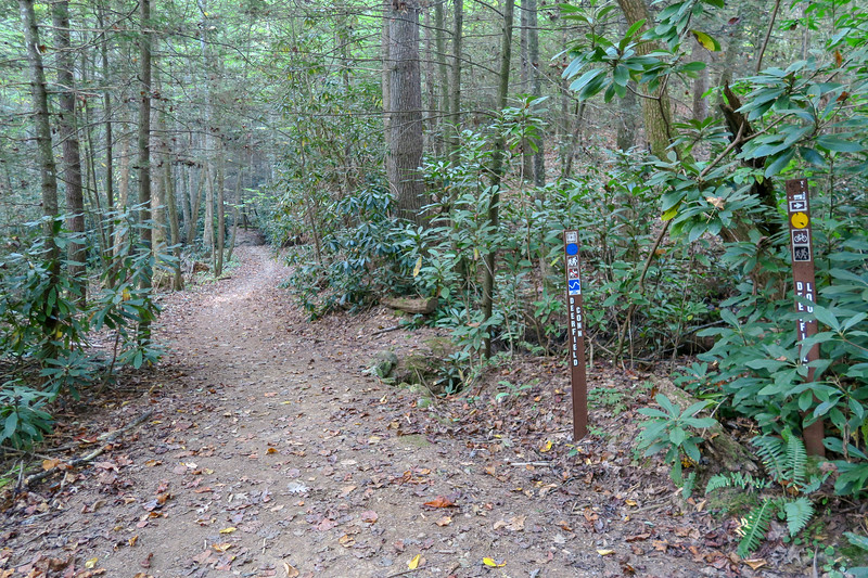 Deerfield Loop/Deerfield Connector/Small Creek Trail Junction -- 2,240'