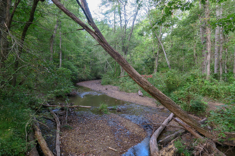 Bent Creek -- 2,150'