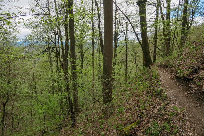 Squirrel Gap Trail -- 3,340'
