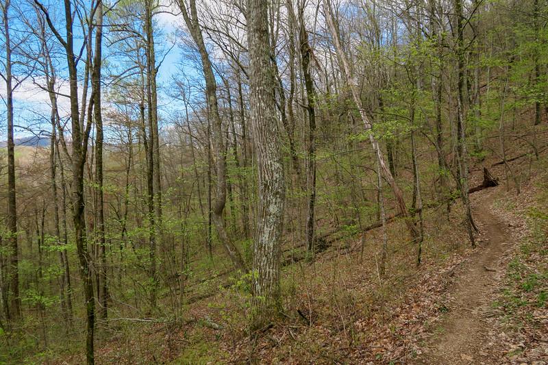 Squirrel Gap Trail -- 3,480'