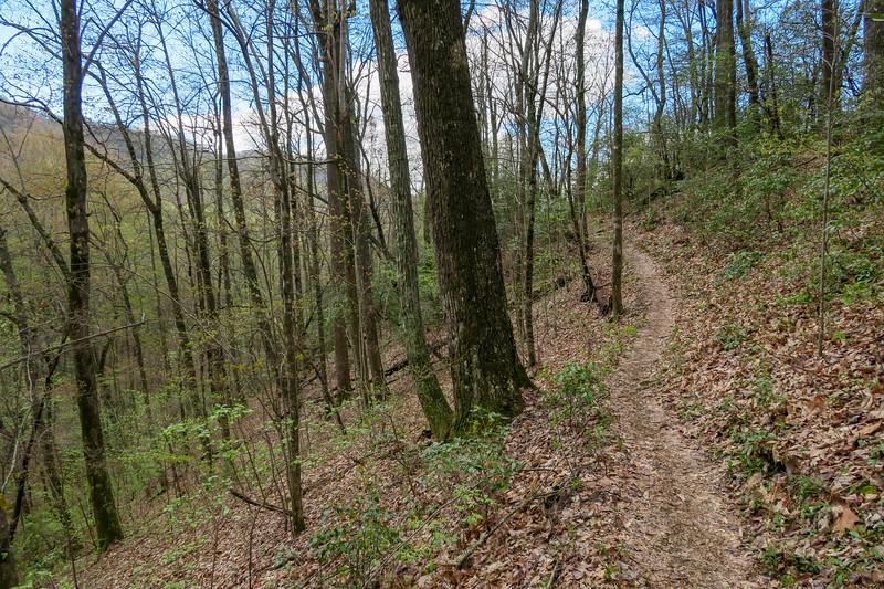 Squirrel Gap Trail -- 3,330'