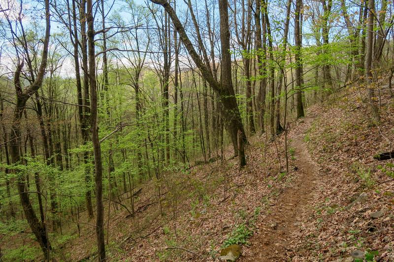 Squirrel Gap Trail -- 3,390'