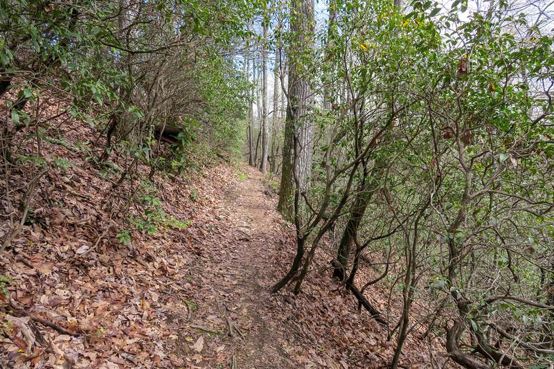 Squirrel Gap Trail -- 3,380'