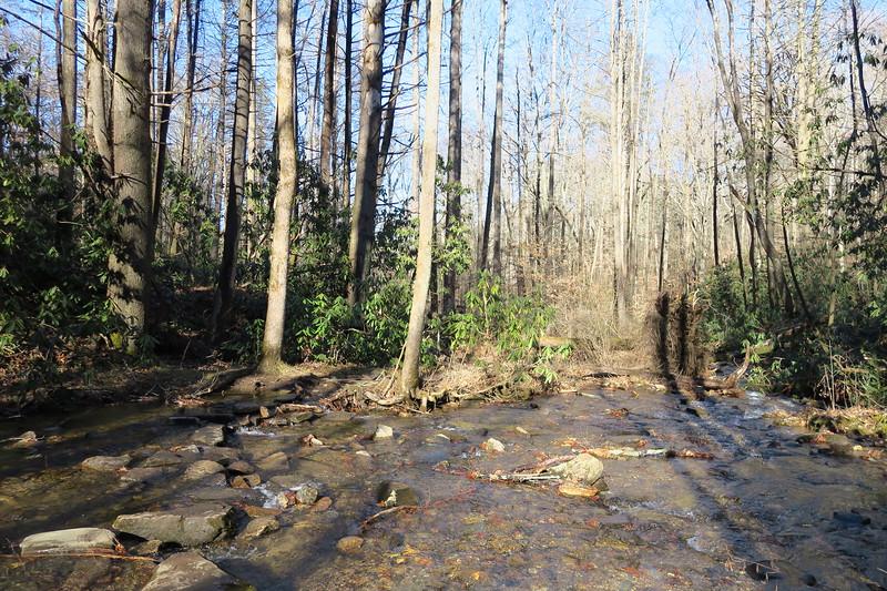 Cedar Rock Loop Trail -- 2,430'