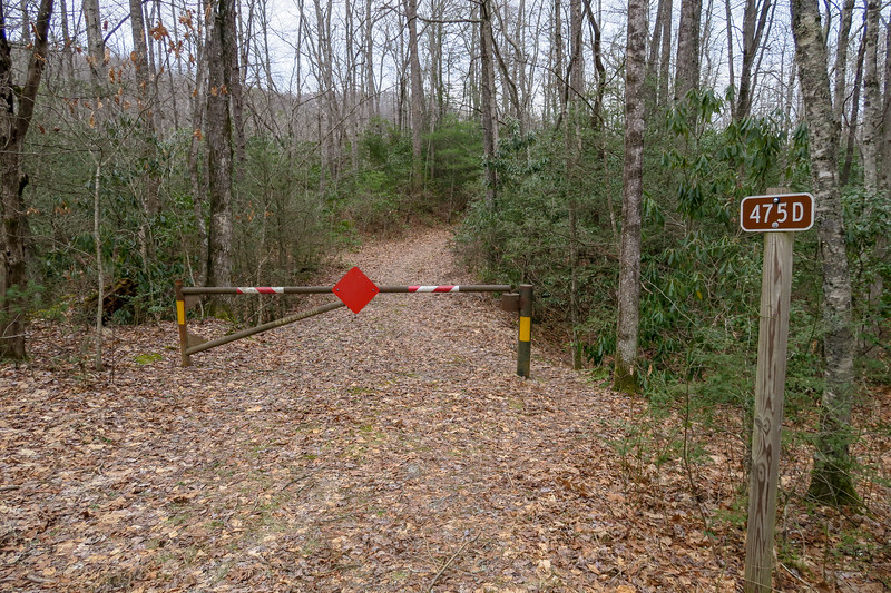 Cemetery Loop Trailhead (F.R. 475)