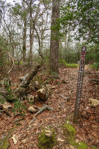 Cemetery Loop Trail @ McCall Cemetery