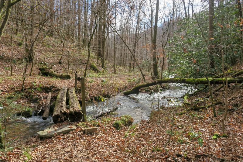 Coontree Loop Trail -- 2,300'