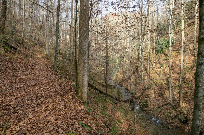 Coontree Loop Trail -- 2,350'