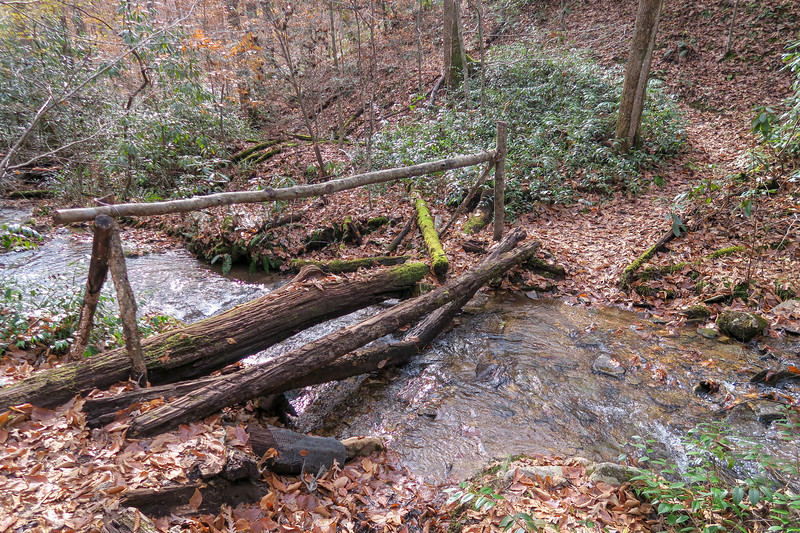 Coontree Loop Trail -- 2,500'