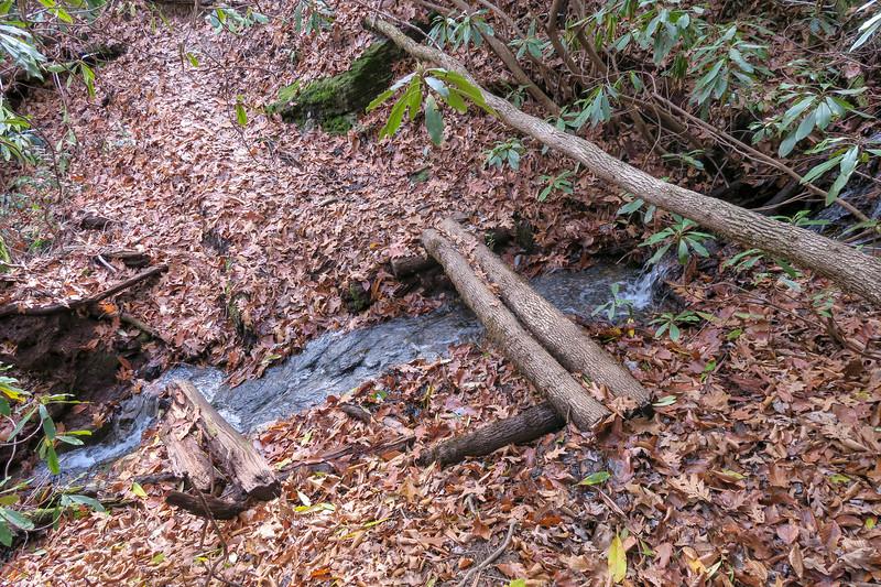 Coontree Loop Trail -- 2,750'