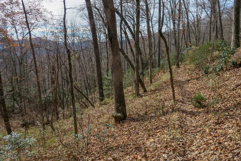 Coontree Loop Trail -- 3,280'