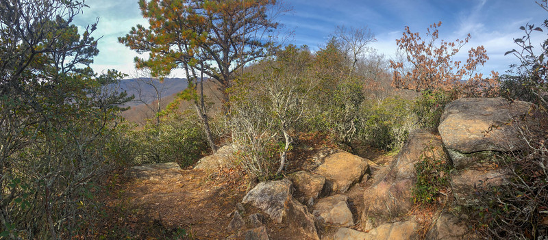 Bennett Gap Trail @ Overlook Rock -- 3,450'