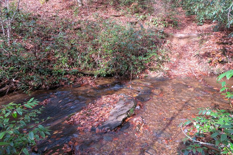 Coontree Loop Trail -- 2,550'