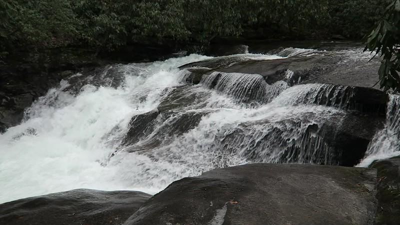 Davidson River Cascade
