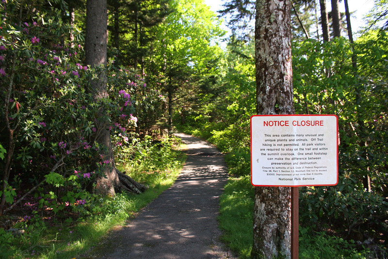 Not a wilderness trail...the paved pathway and warning signs are a good indicator of that...