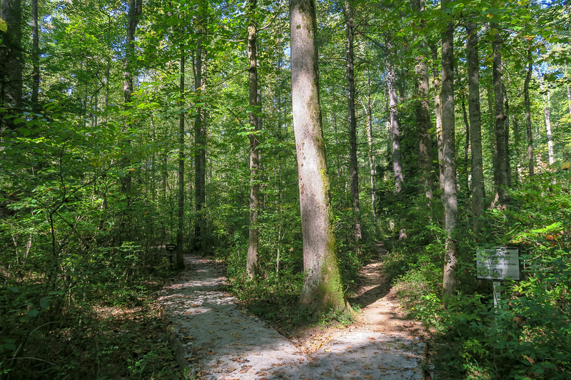 Exercise Loop/Andy Cove Nature Trail West Junction