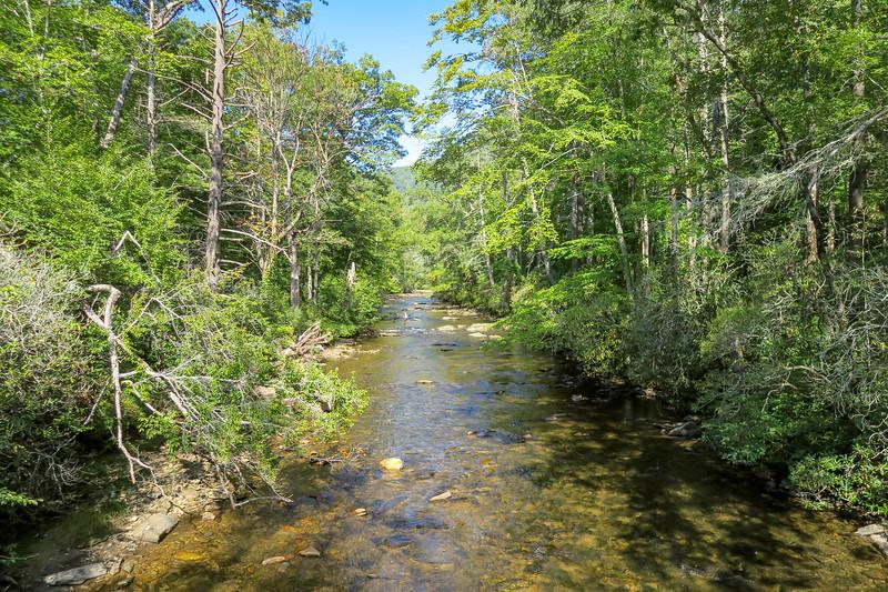 Davidson River