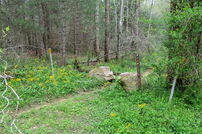 Foster Creek Lower Trailhead -- 2,220'
