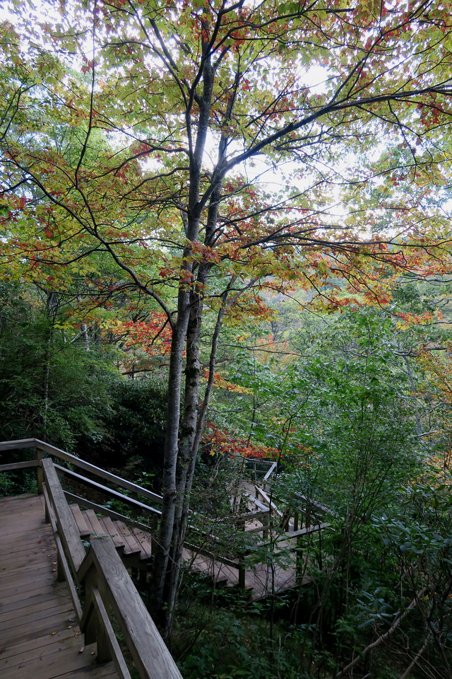 Second Falls Trail