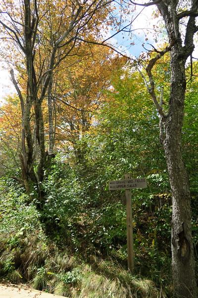 Second Falls-Graveyard Fields Loop Trail Junction