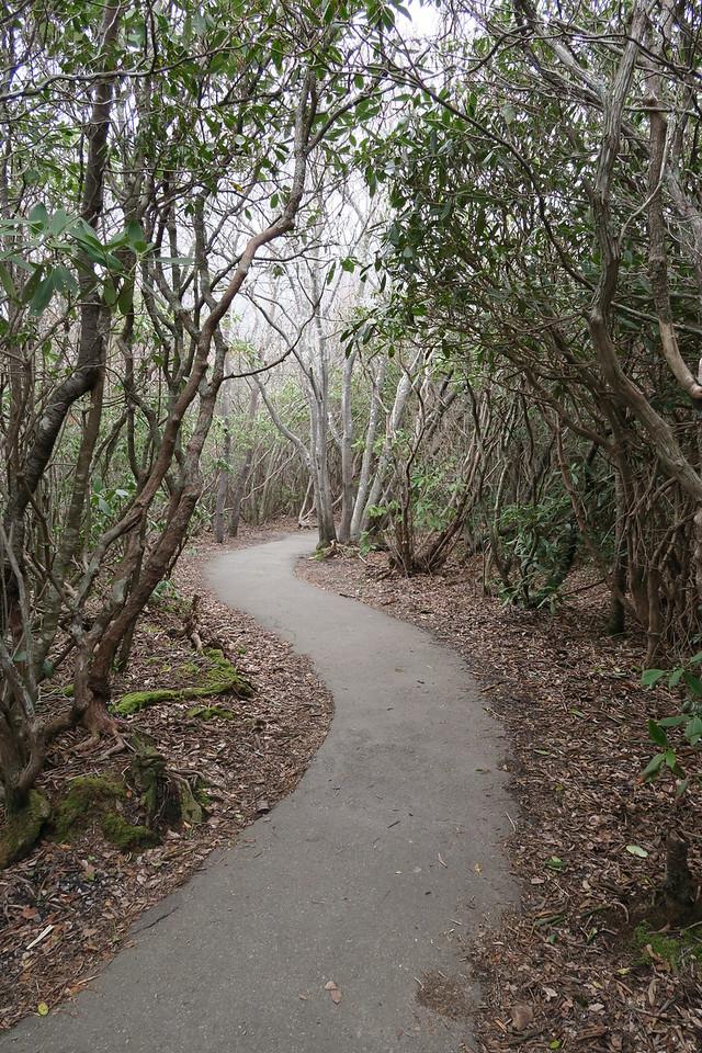 Graveyard Fields Loop