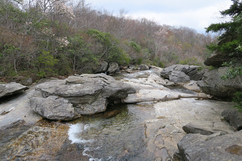 Graveyard Fields Loop