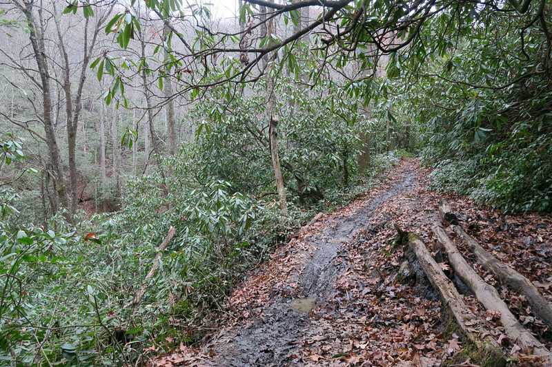 Butter Gap Trail