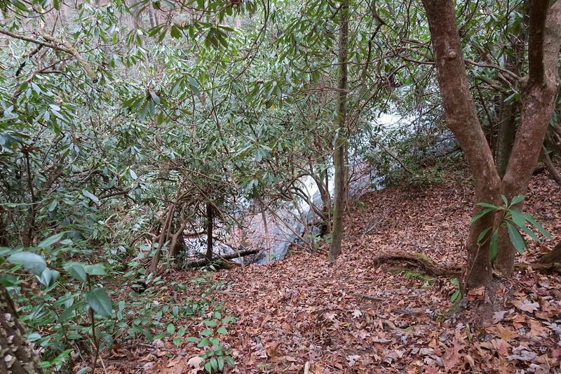 Grogan Creek Falls Scramble Path