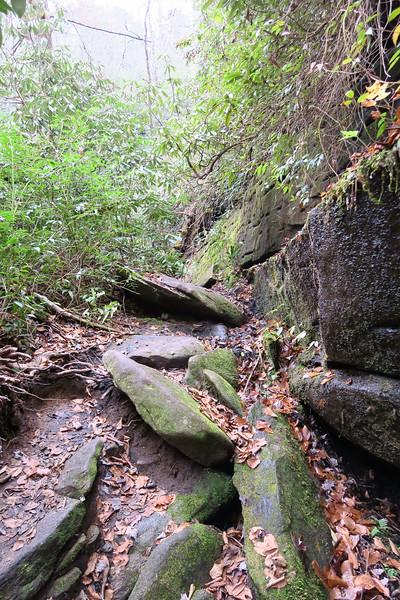 Cedar Rock Creek Falls Spur
