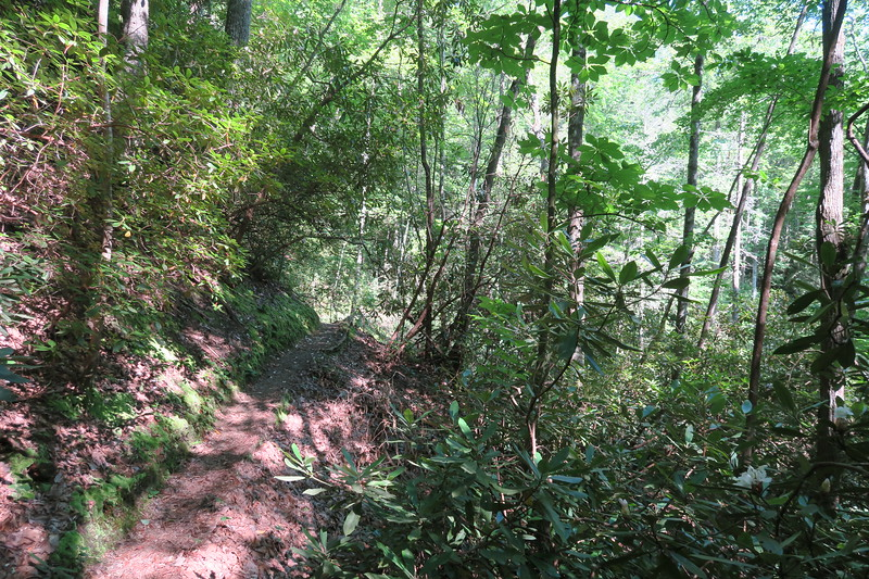Foothills Trail -- 2,050'