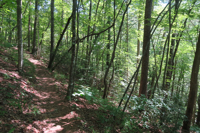 Foothills Trail -- 1,760'