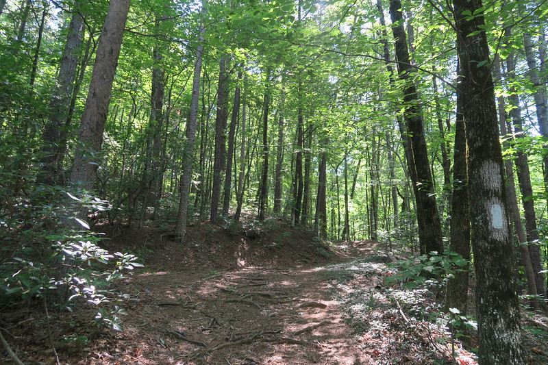 Foothills Trail -- 2,080'