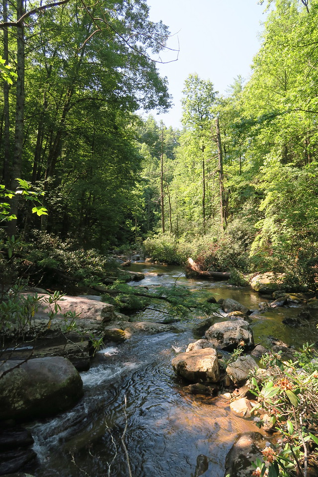 Thompson River -- 1,620'