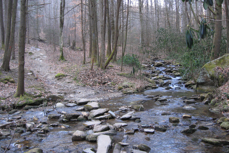 After about 3/4 of a mile the trail crosses Horse Cove Creek which on most days is a simple rock-hop...