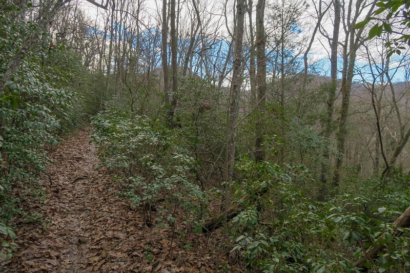 Explorer Loop Trail -- 2,540'