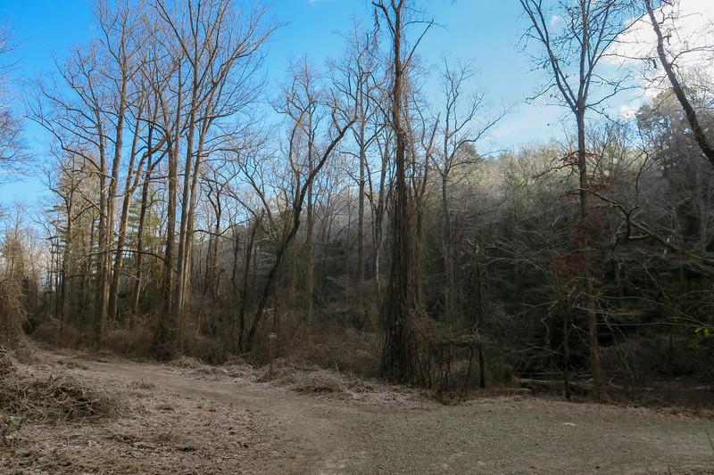Hardtimes Road-Forest Road 480 Junction -- 2,110'