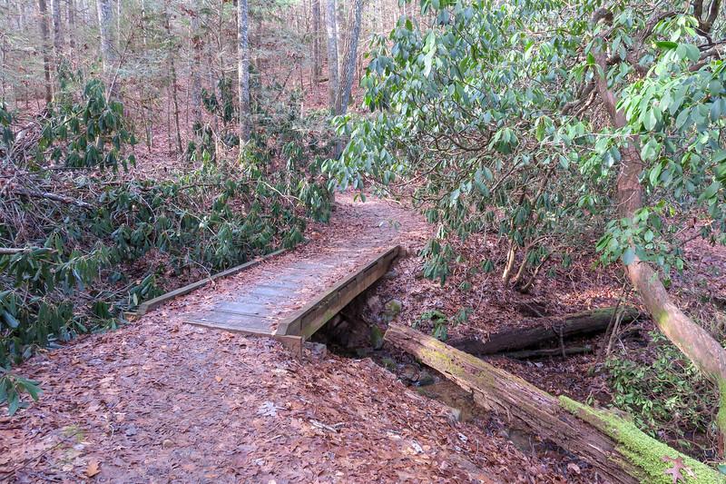 Small Creek Trail -- 2,220'