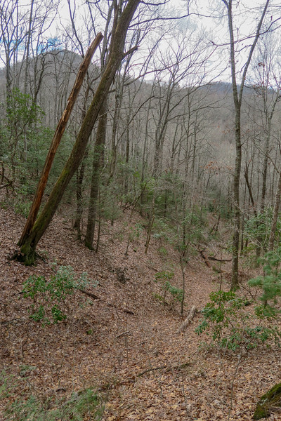Explorer Loop Trail -- 2,560'