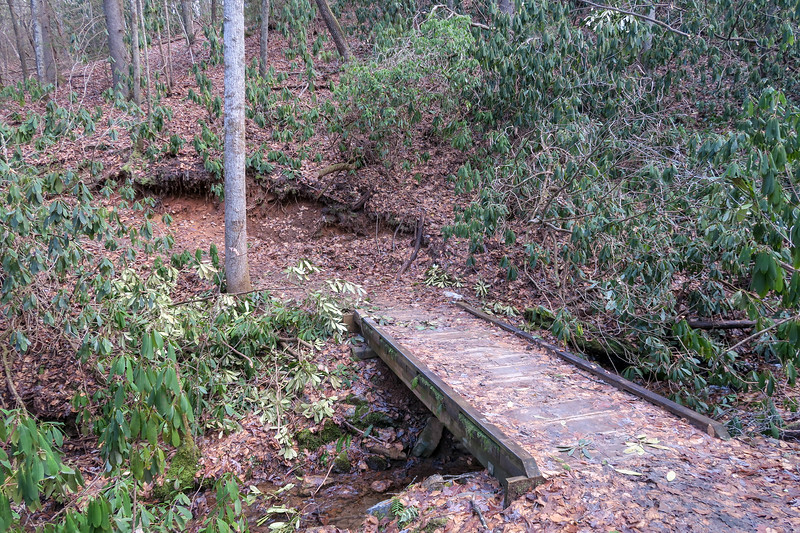 Small Creek Trail -- 2,210'