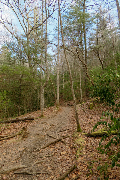Homestead Trail -- 2,120'