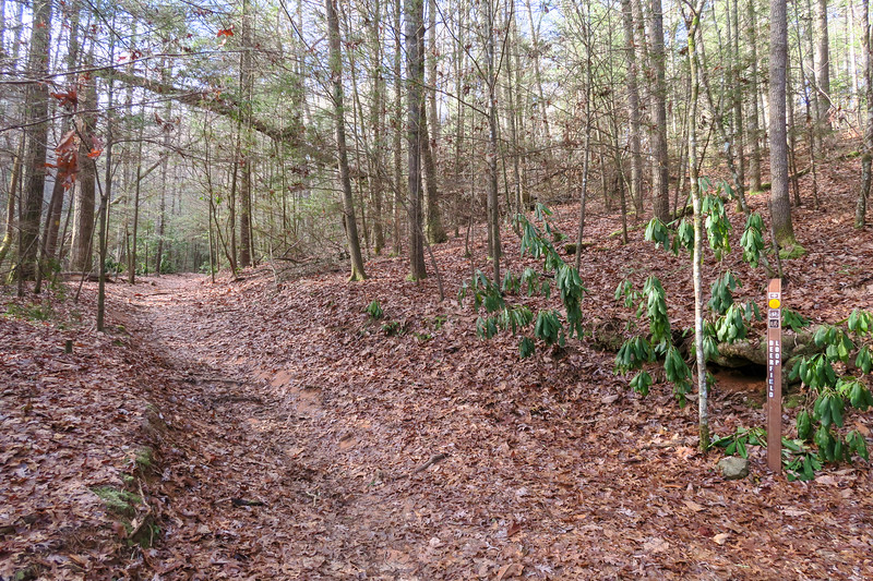 Deerfield Connector-Deerfield Loop Trail Junction -- 2,240'