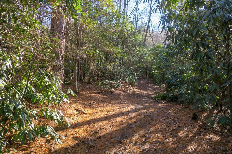 Explorer Loop Trail -- 2,250'