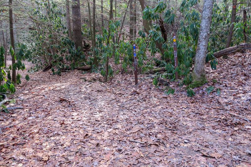 Small Creek-Deerfield Connector Trail Junction -- 2,240'