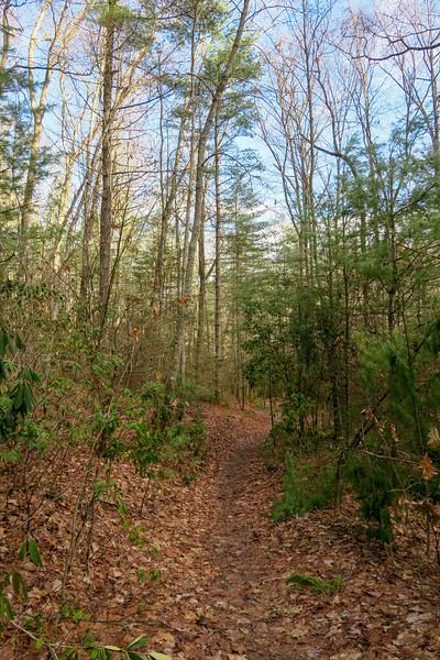 Deerfield Loop Trail -- 2,260'