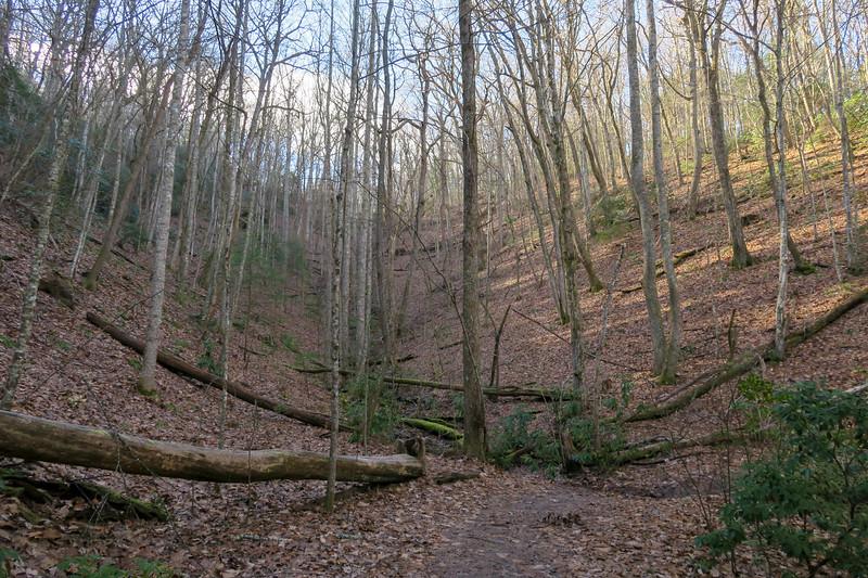 Explorer Loop Trail -- 2,400'