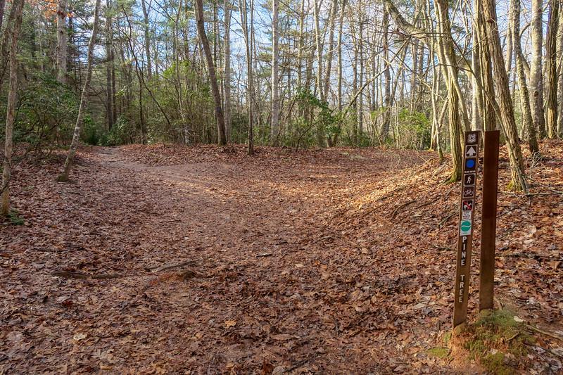 Deerfield Loop-Pine Tree Loop Trail Junction -- 2,320'