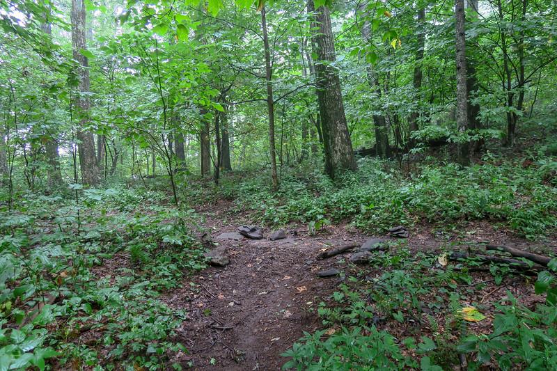 Slate Rock-Laurel Mountain Connector/Laurel Mountain Trail Junction -- 4,080'